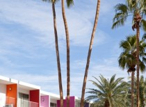 The Saguaro Palm Springs / Stamberg Aferiat Architecture
