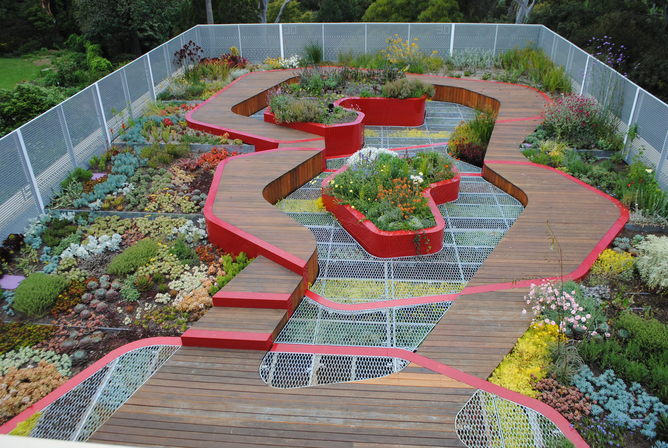 Green roofs and walls – a growth area in urban design
