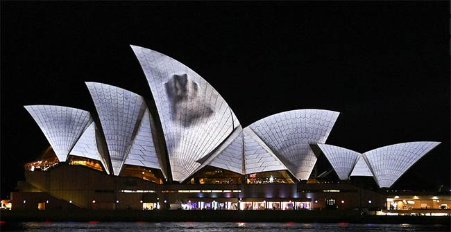 Sydney Opera House - Facade Projection