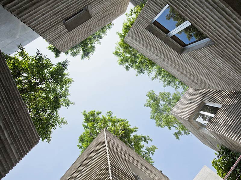 A Clever Idea for Creating Houses With Built-In Trees