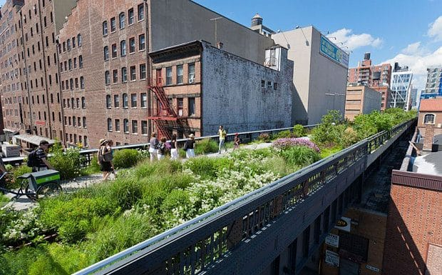 Urban oasis: The High Line in New York