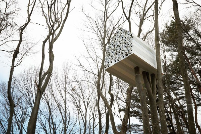 The 7 Best Tree Houses On Earth [Infographic] by the team at Heiton Buckley