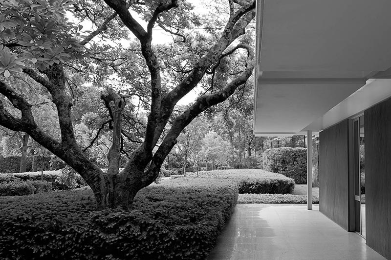'The Landscape Architecture Legacy of Dan Kiley' Review: Urban Oases