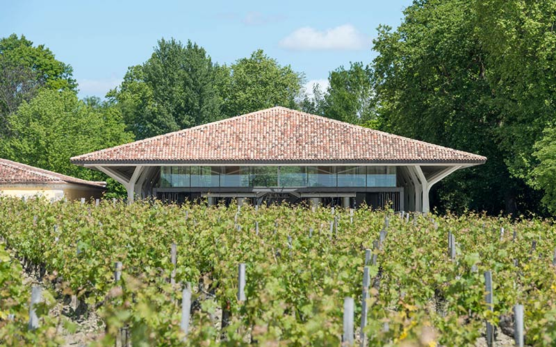Launch of Foster + Partners' new winery for Château Margaux