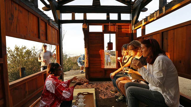 Artists create teahouse in LA's Griffith Park with wood from 2007 fire