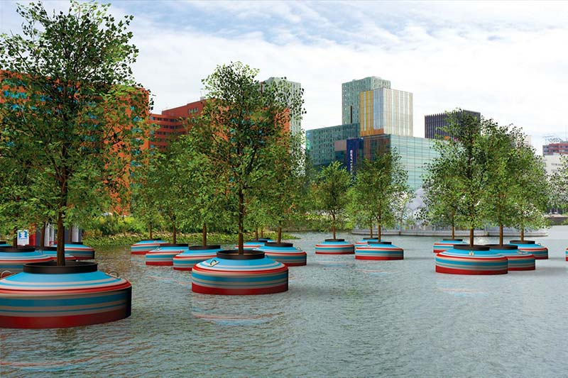 A floating forest for Rotterdam