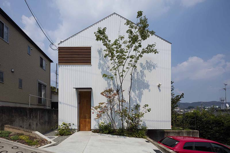 House in Ikoma / arbol