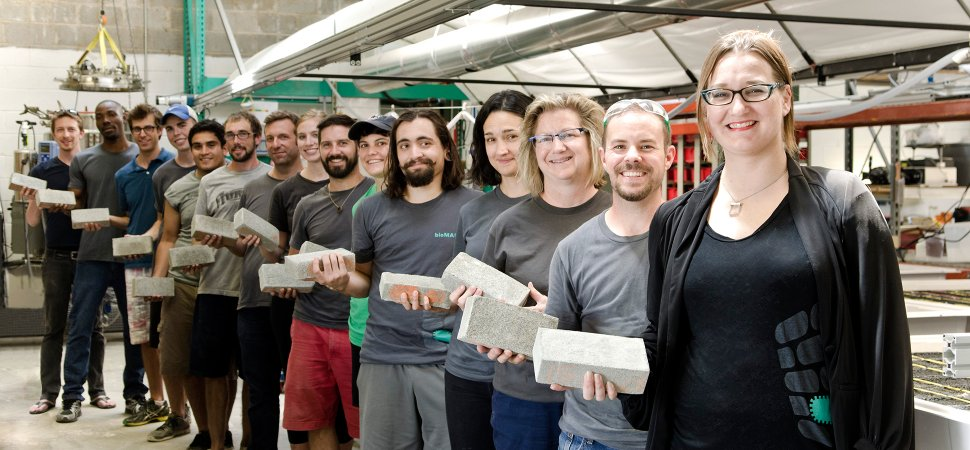 BioMason Is Using Bacteria to Grow Bricks From Scratch