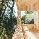 Wood Studio House / Dom Arquitectura