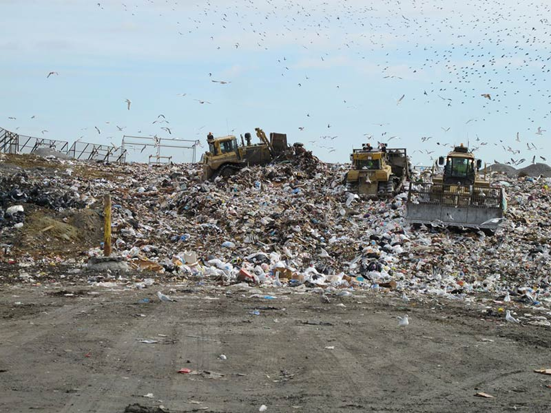 The future of waste in America's biggest city