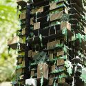 Tropical tower / triptyque architecture