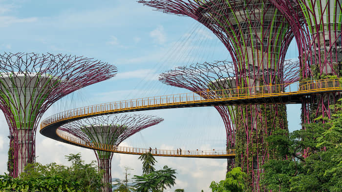 'Soft and hairy' architecture: why designs should embrace nature