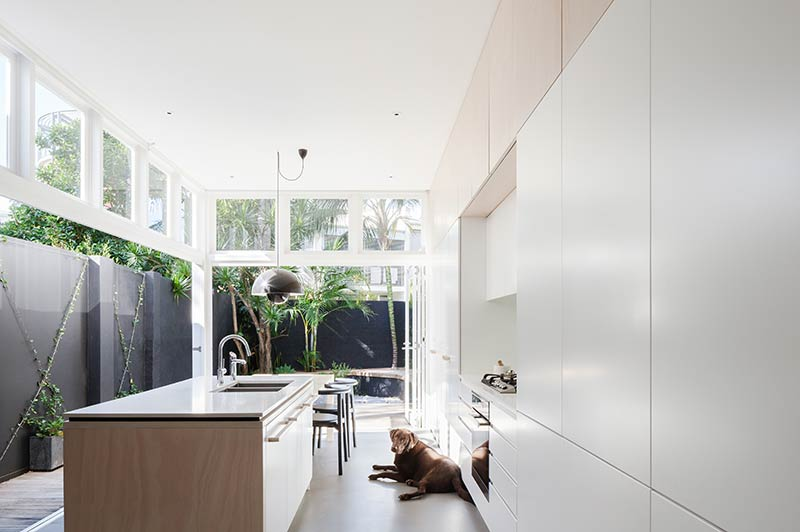 House Paddington / Architect Prineas