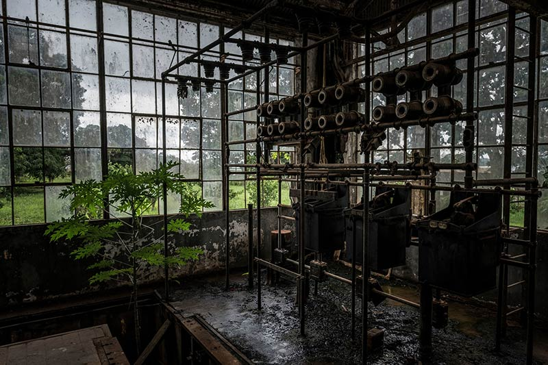 Deep in Brazil's Amazon, Exploring the Ruins of Ford's Fantasyland