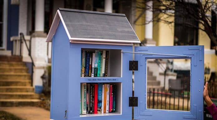 "Architects gave the humble ""little free library"" a makeover"