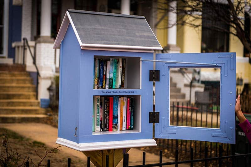 """Architects gave the humble """"little free library"""" a makeover"""