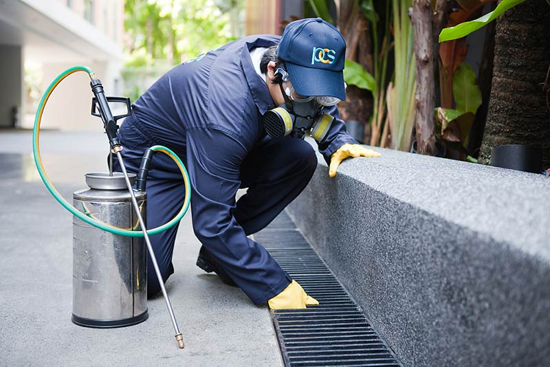 Making your pest control is as safe as possible