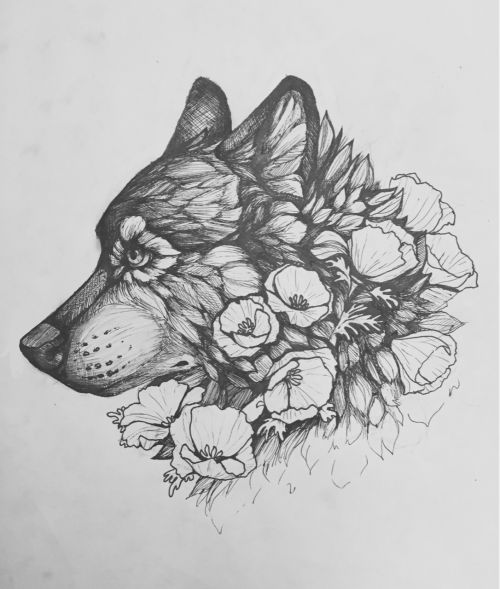 59. Sketch of a Wolf Kissed by The Miracle of Nature