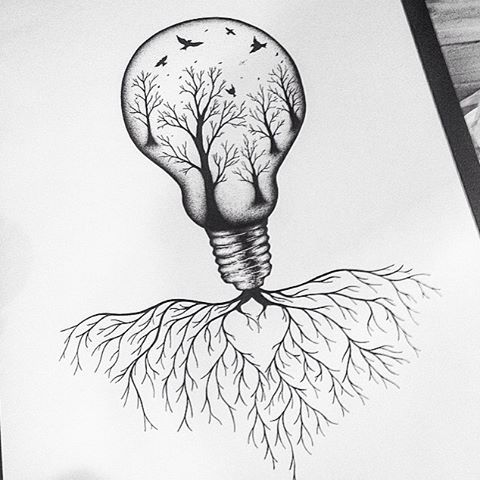 30. Switching on Nature's Lightbulb by tayla_ob