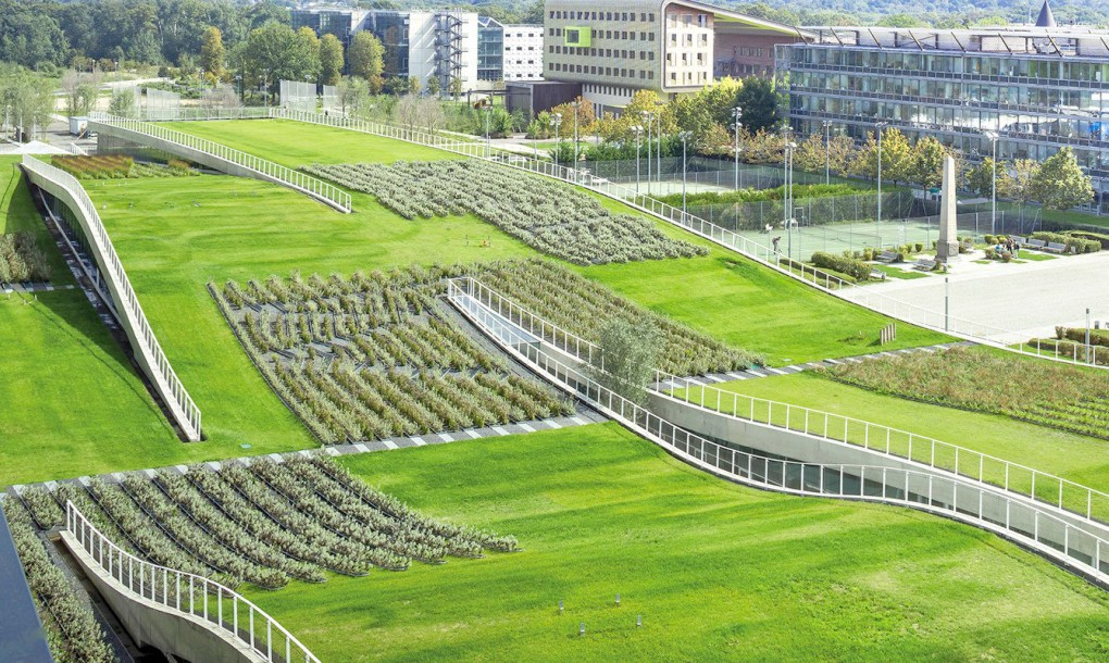 France green roof building