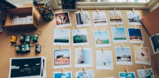 Best Printers for Giclee Prints