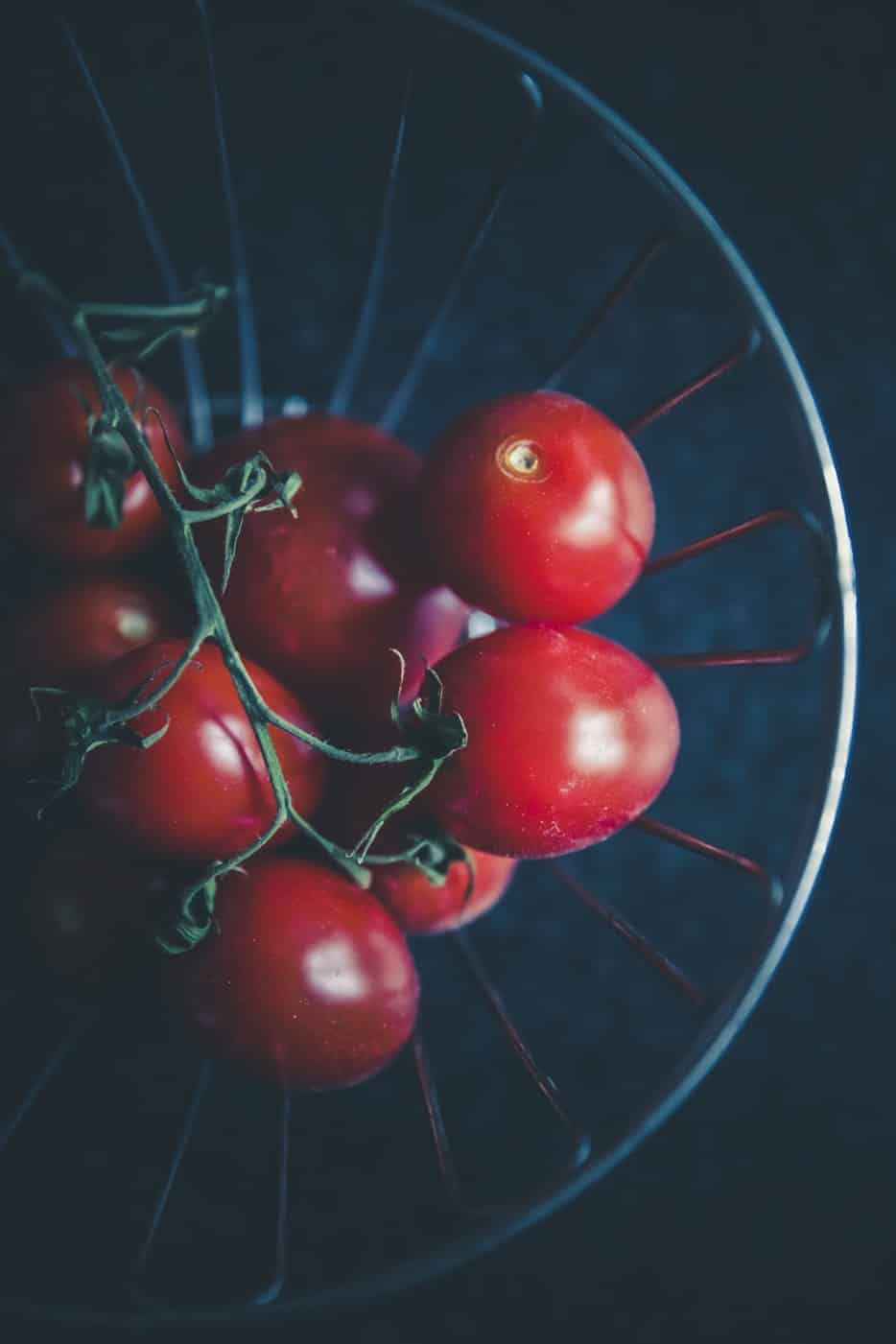5 Best Hydroponic System for Tomatoes in 2019 Reviewed
