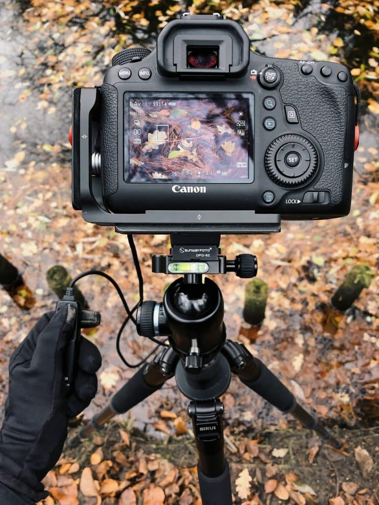The top best tripods for macro photography