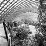 Roof for the multihalle 1970–1975 mannheim frei otto