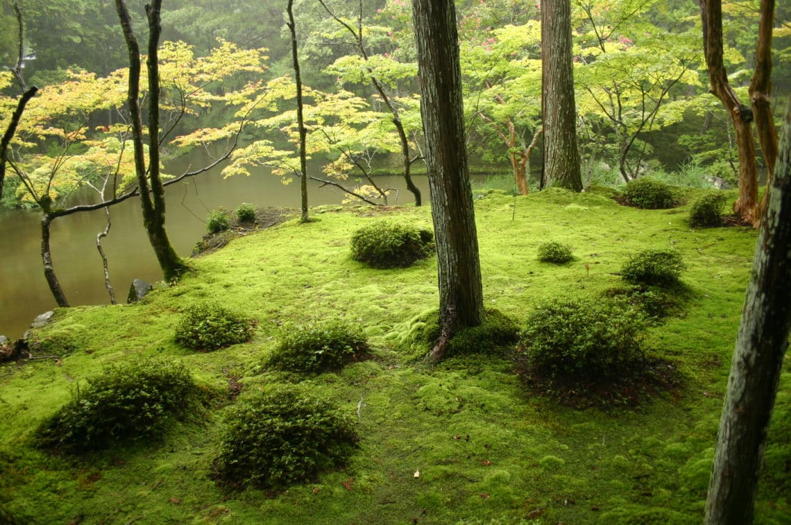31 of the Most Inspiring Japanese Zen Gardens in the World