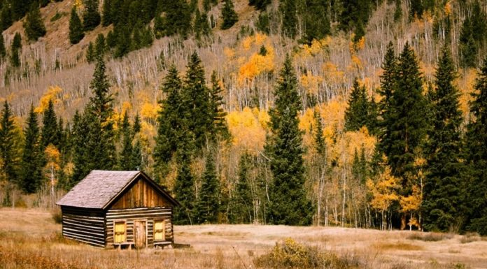 Different Types of Generators for Your Off-the-Grid Cabin