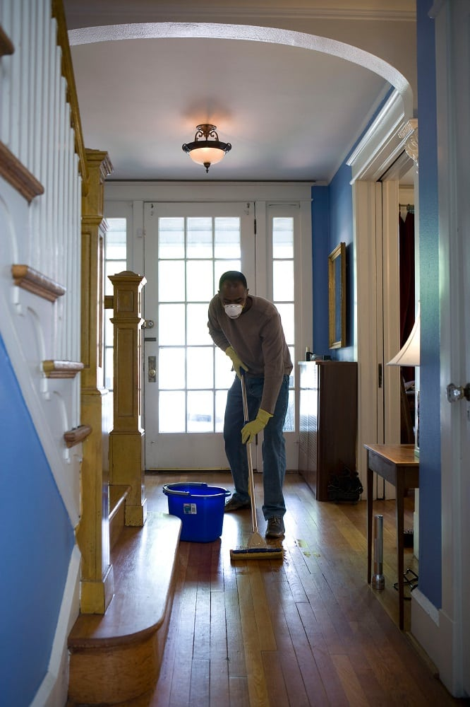The optimal frequency of cleaning everything in your house 5