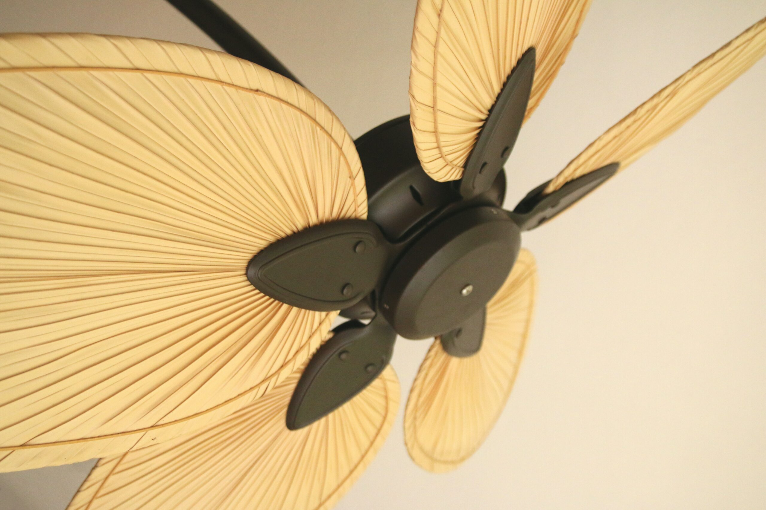 Are ceiling fans worth it 4 scaled