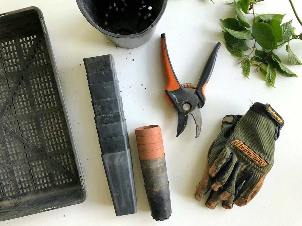 Best gifts for gardeners 1