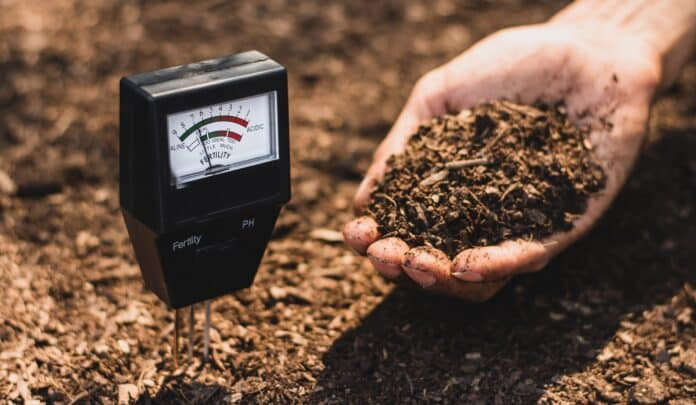 Soil meter that is currently being used in a loam that is suitable for cultivation.