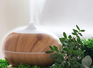Composition with air humidifier and decorative greenery close up.