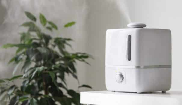 Best humidifier for plants 004