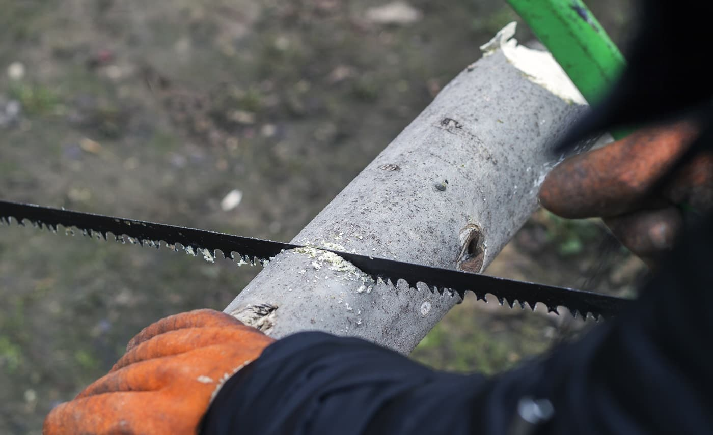 Man cuts wood with a manual saw