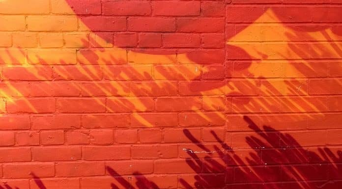 Learn How to Remove Paint From Brick