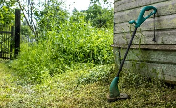 Electric grass trimmer stands in the garden near the house