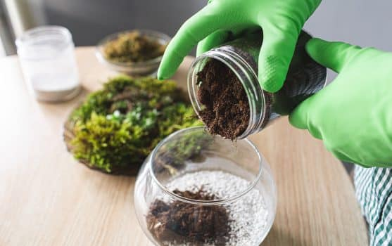 Close-up of hands in gloves pour peat into the florarium